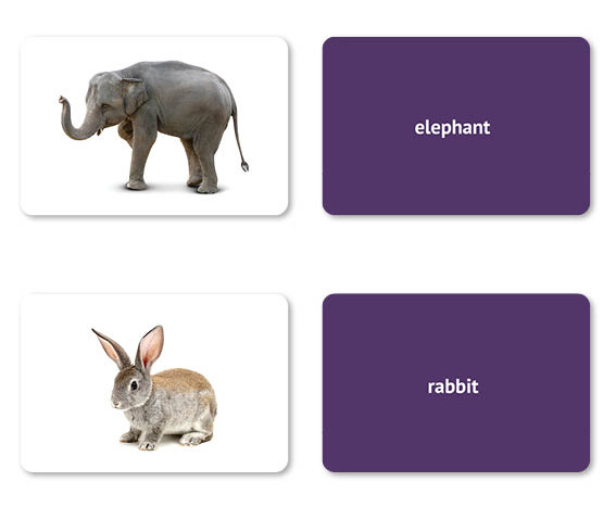 noun flashcards with pictures